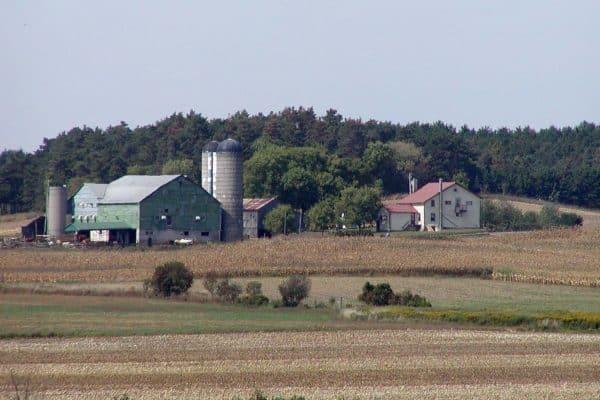 Farmer Suicide Rates