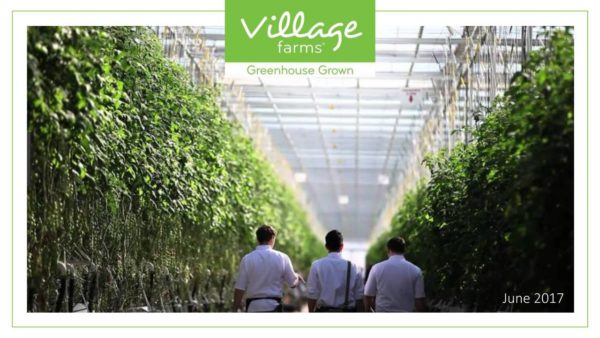 Village Farms International has 133% upside: Beacon Securities
