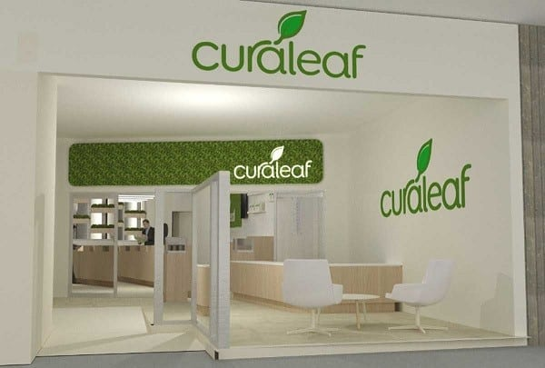 curaleaf holdings stock